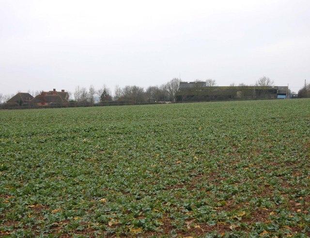 Hatton Bank Farm