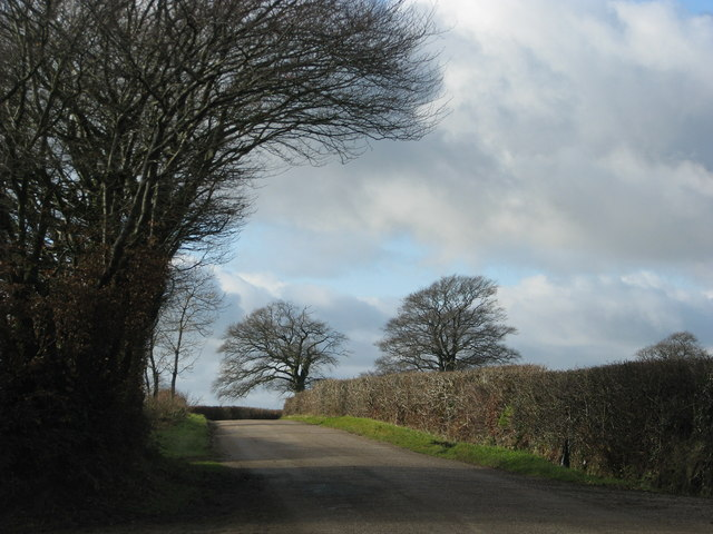 Quiet road near Nutcombe Farm