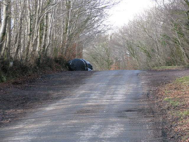 Quiet tree-lined road drops away from Fanny's Cross