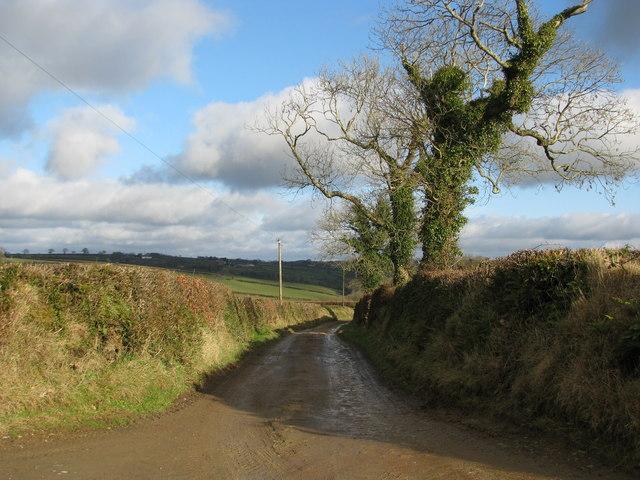 Muddy bridleway to Catkill
