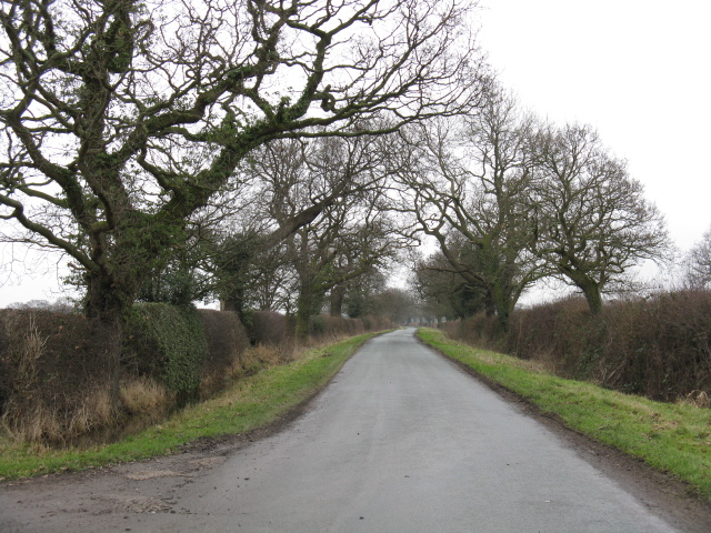 Bradwall Road At Curtishulme Farm
