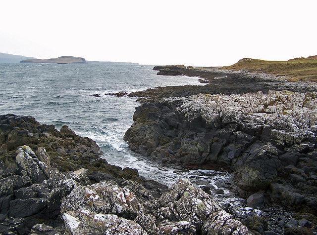 Shore of Loch Caroy