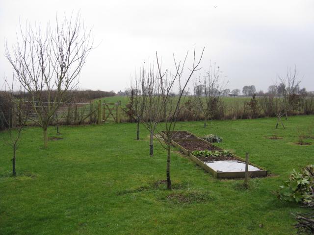 Gibb Hill Fields