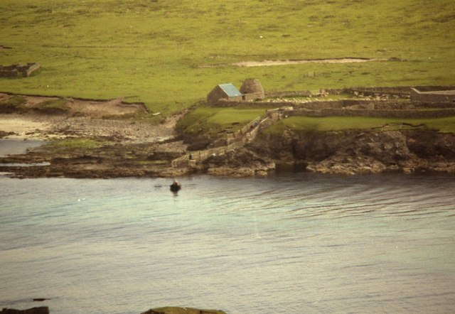 1990 Lambs  coming out of Noss by man power