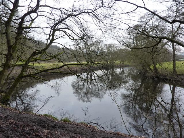 River Derwent near Calver