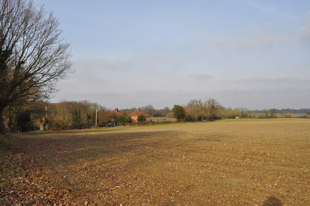 Bergh Apton Fields