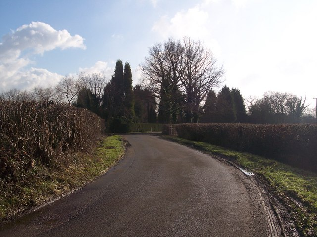 Marten Lane