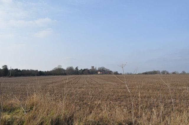 Bergh Apton Fields and church