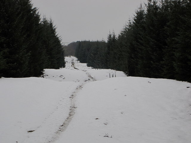 The Post Road in winter