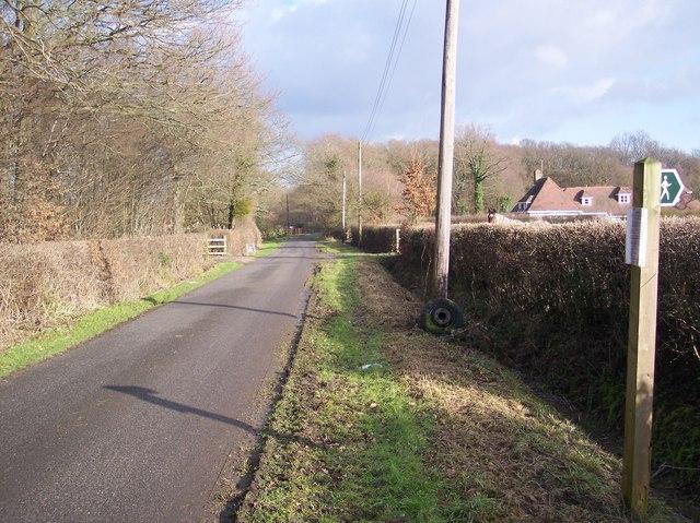 Brissenden Green Lane near Potter's Farm