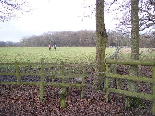 Stile near Brissenden Green Lane