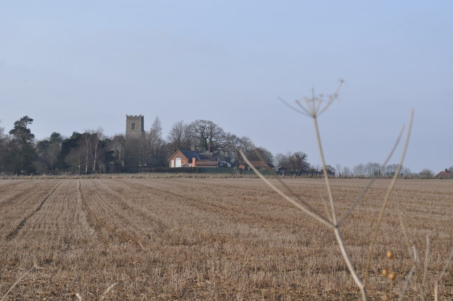 Bergh Apton Fields and church