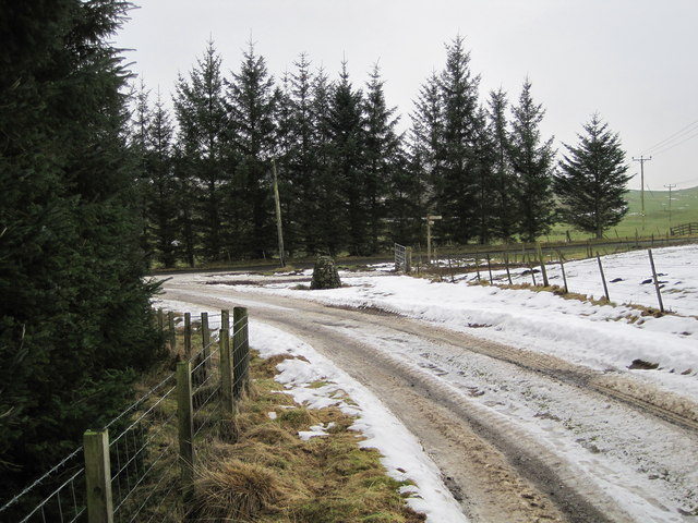 Stewarton track joins the road