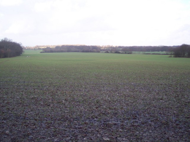 View from near Mayshaves Wood