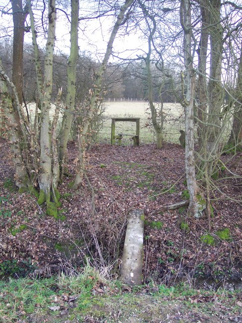 Footbridge and Stile in Mayshaves Wood