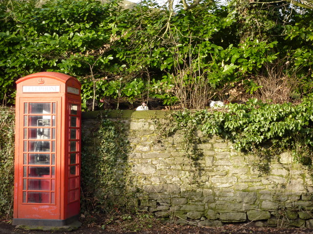 Red phone box with chickens