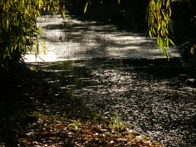 Sunlight glinting on the water at New River Walk (1)
