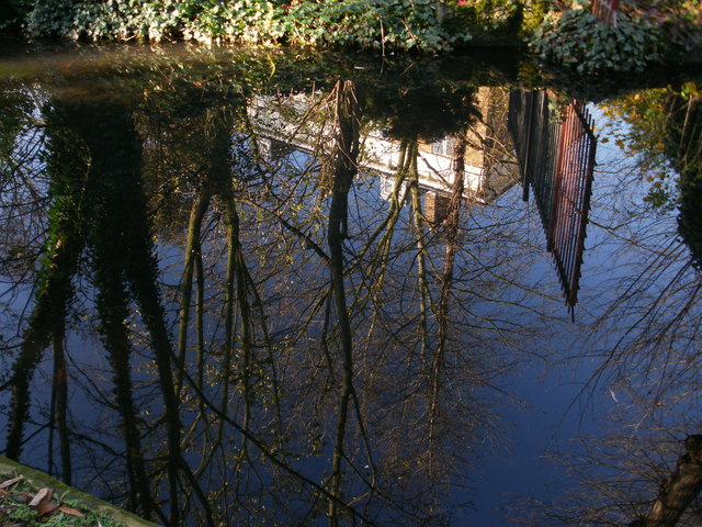 Gate, houses and trees reflected in the water