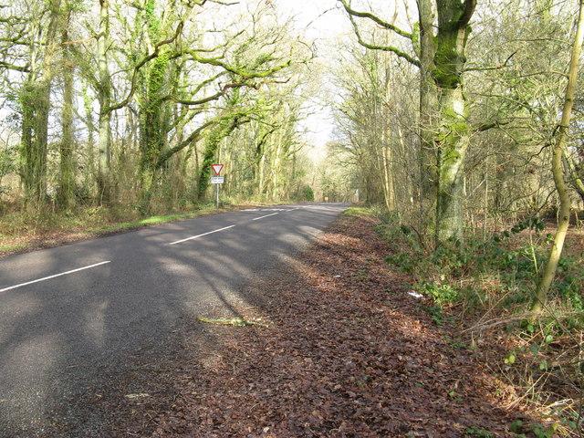 North on Jobson's Lane towards Gospel Green