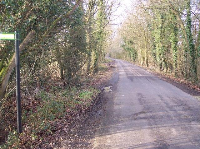 Bethersden Road