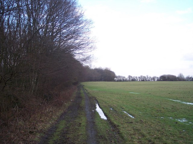 Byway to Magpie Hall Lane, near Calais Wood