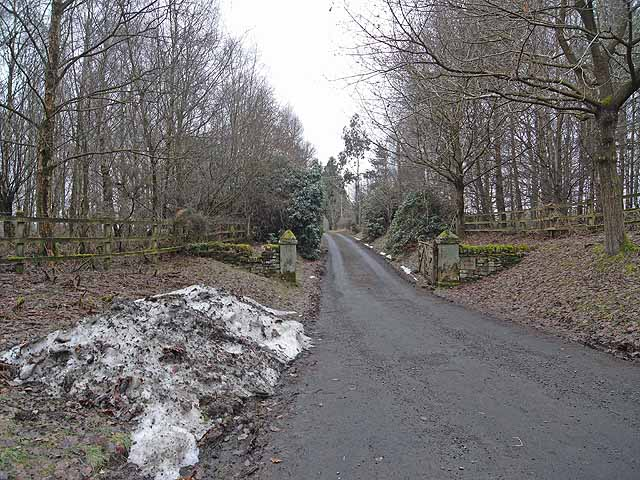 Driveway to Linnel Wood