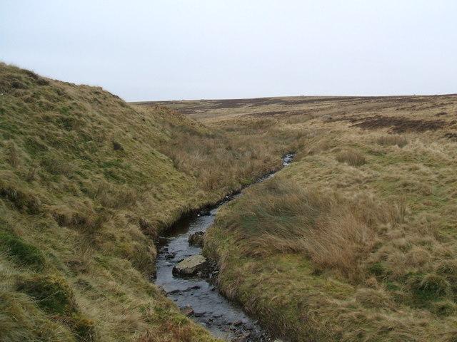 Mossy Beck