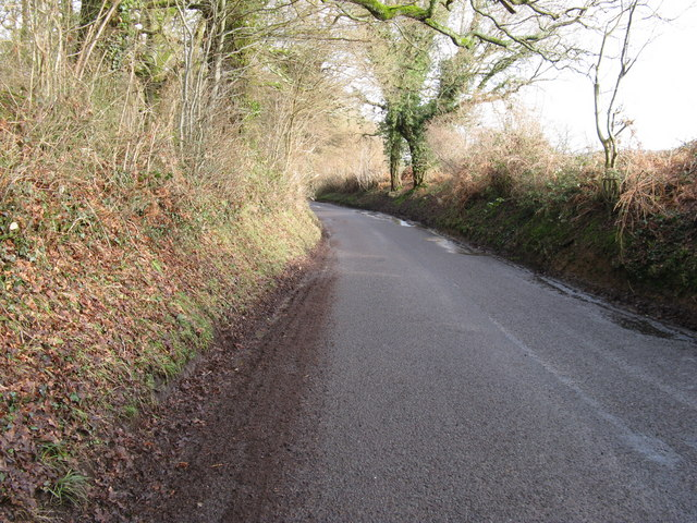 Jobson's Lane with the southern end of Jay's Copse on the left
