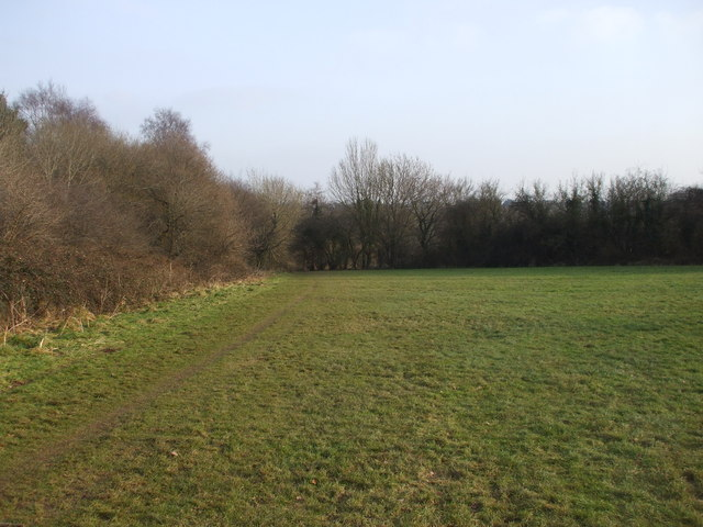 Open grassland near the Nant Fawr, Cardiff