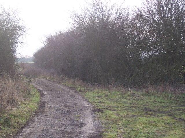 Byway junction near Bayley Wood Farm