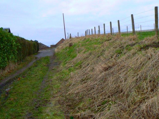 Pipelands track