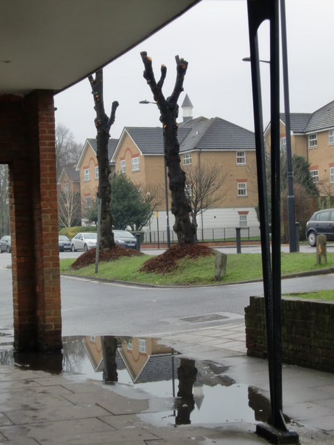 Oakwood reflection, London N14