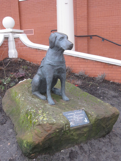 Statue of a guide dog outside the Floral Pavilion