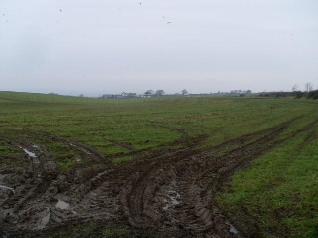Farmland east of Highflat Farm