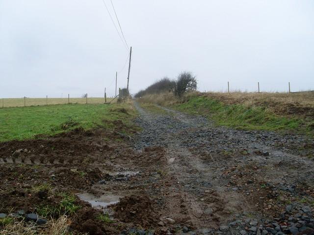 Path to Highflat Farm