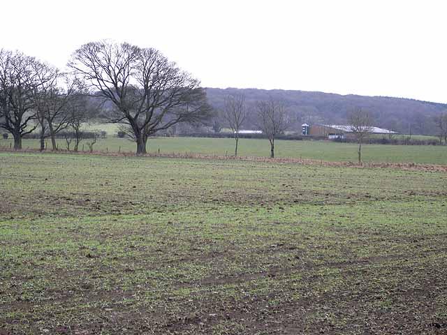 Marley Cote Walls Farm