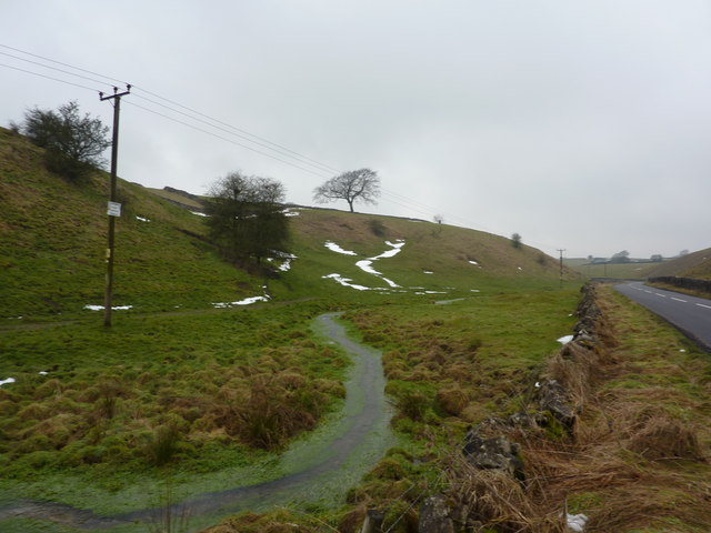 A cress brook, Tideswell
