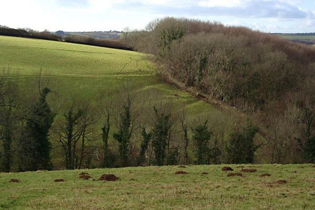Valley, Pasture and Woodland