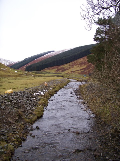 Chapelhope Burn - Upstream View