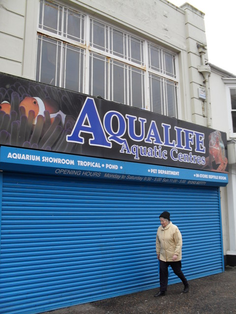 Aqualife in the High Street