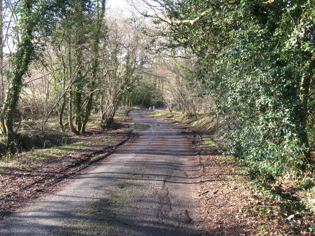 Meandering lane from Northchapel to Hillgrove