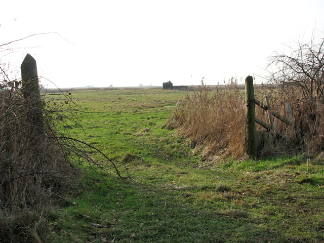 Gate into marsh pasture