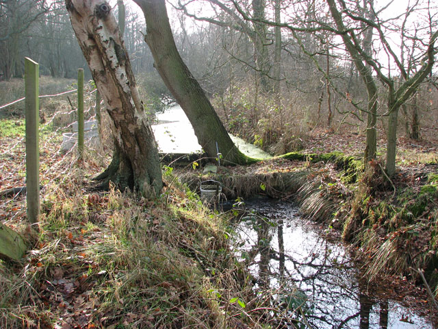 Drainage ditch south of Marsh Lane
