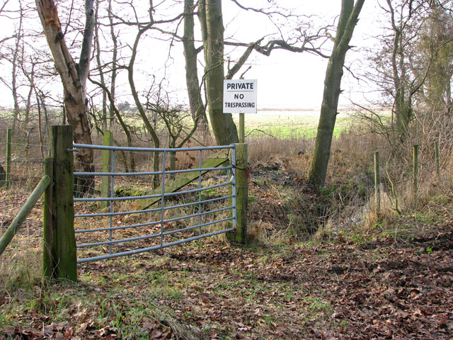 Gate into a fenced-off woodland pasture beside Marsh Lane