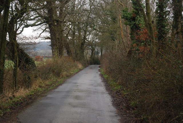 Bridleway to the River Eden