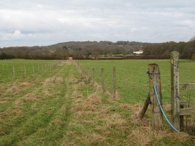 Farm track at Goff's Farm