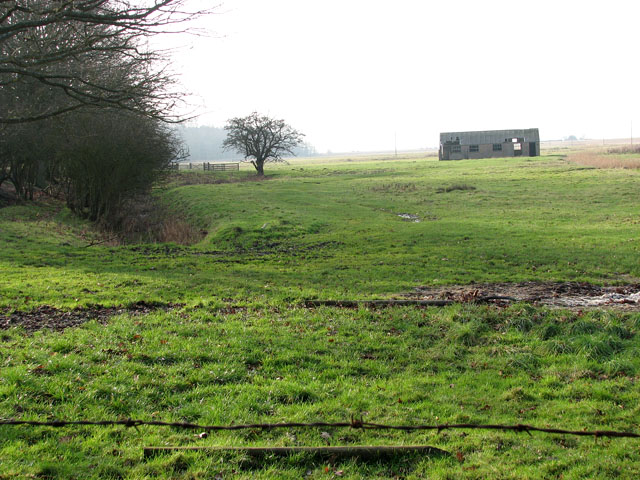 Pasture in Belton Marshes east of the River Waveney