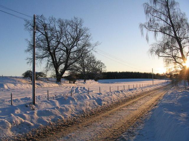 Fornighty Farm