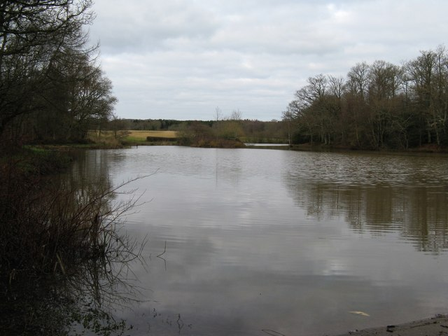 Lake between Chafold Copse on the left and Burrell's Wood