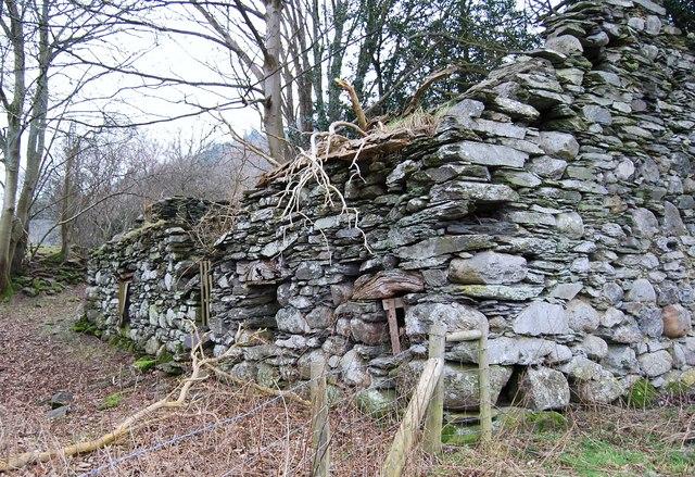 Derelict building near Branas Lodge